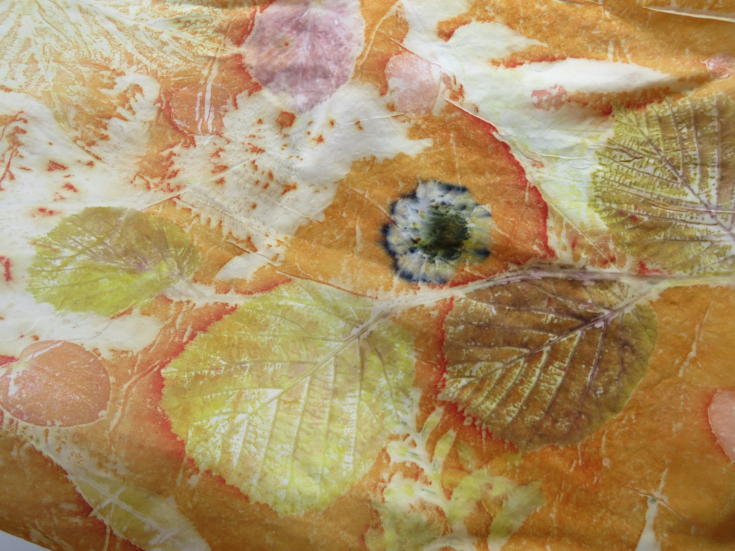 Orange and Lemons on Silk The Print Mine
