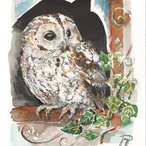 Wise Owl Painting Giclee Print